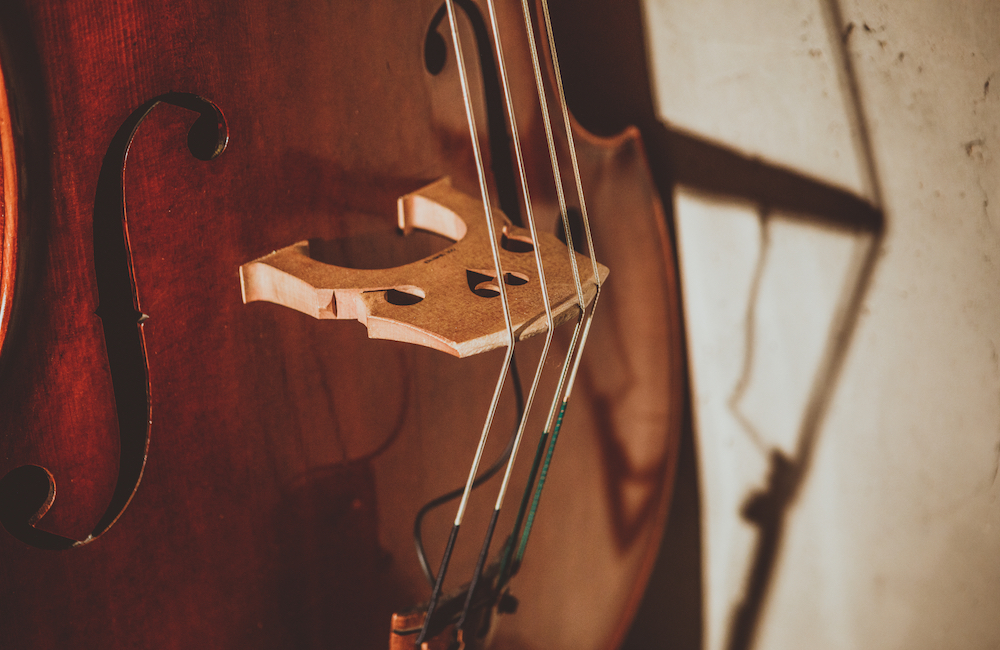 Stringed Instruments: When to Change the Strings