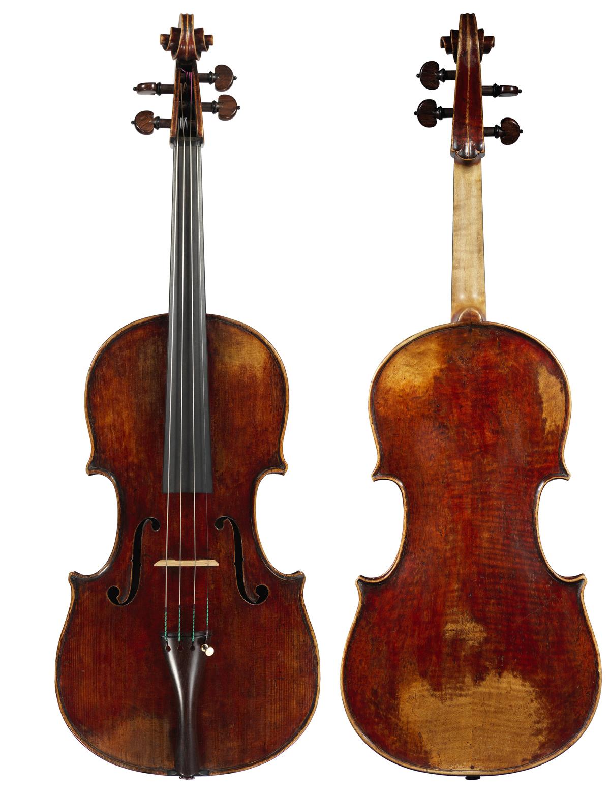 Viola by Giacomo Rivolta
