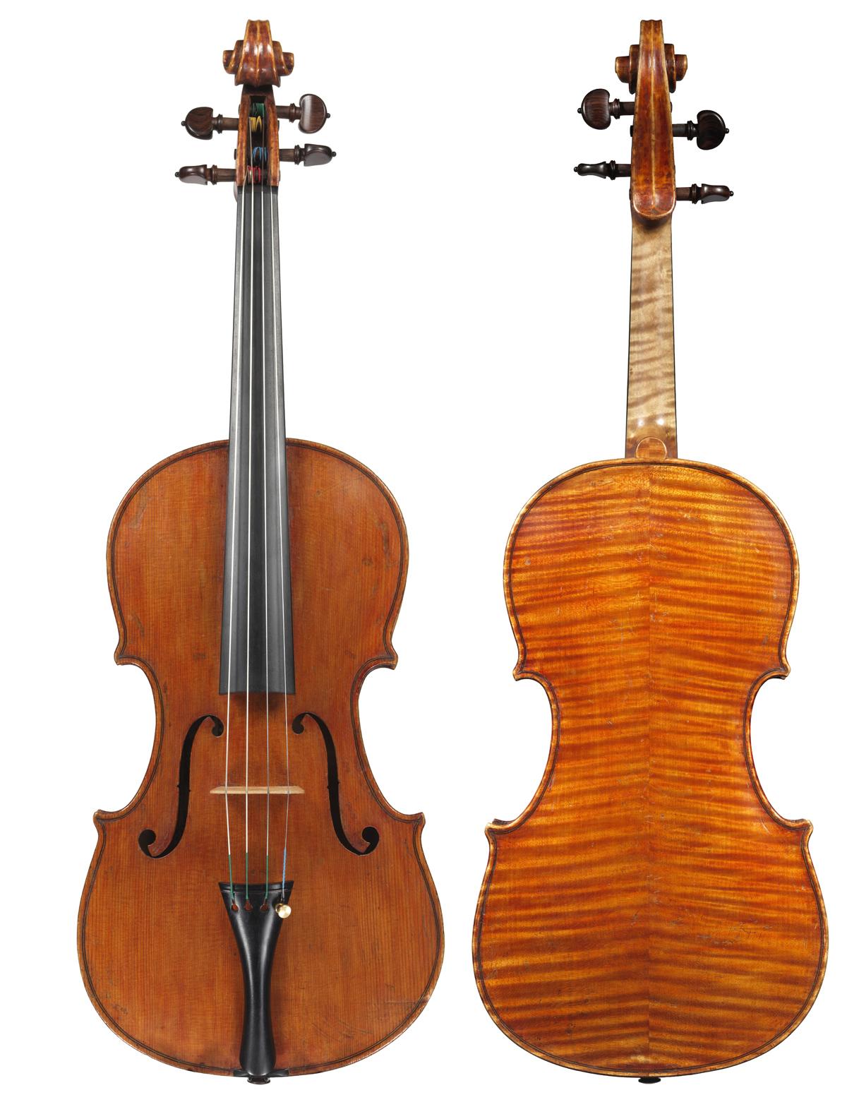 Viola by Stefano Scarampella