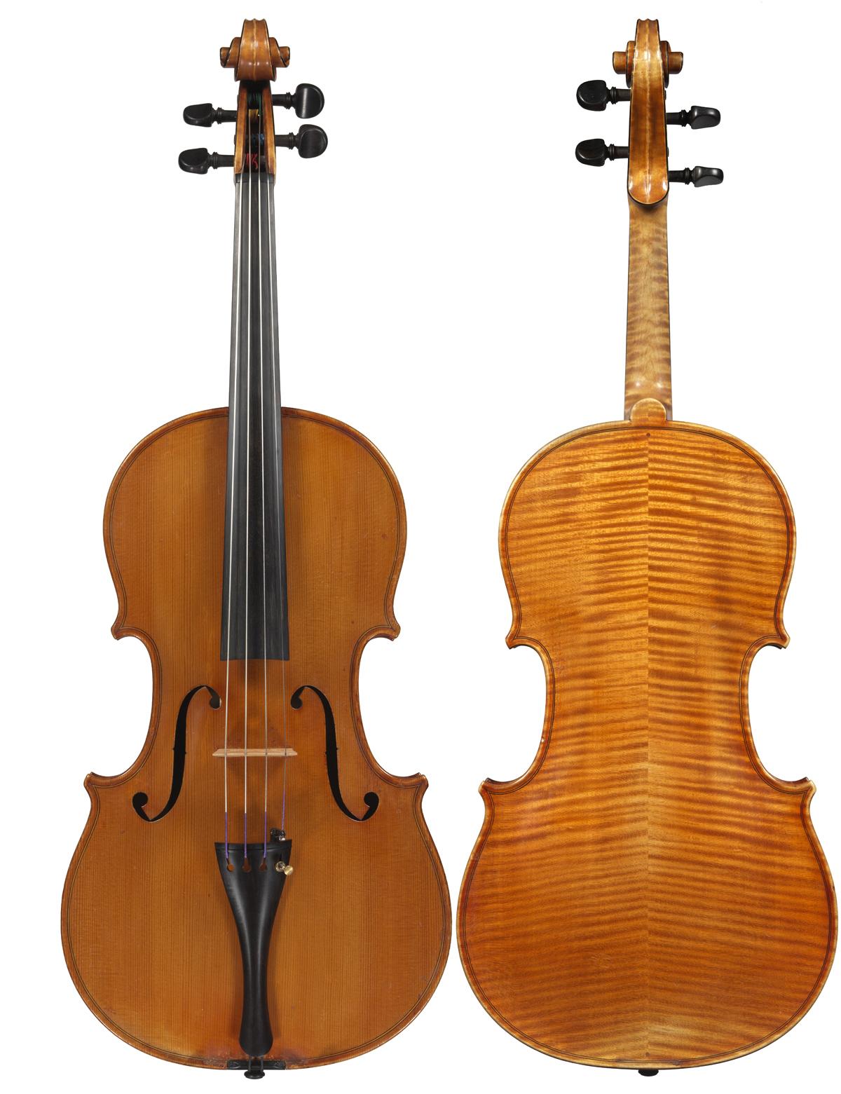 Viola by Ansaldo Poggi