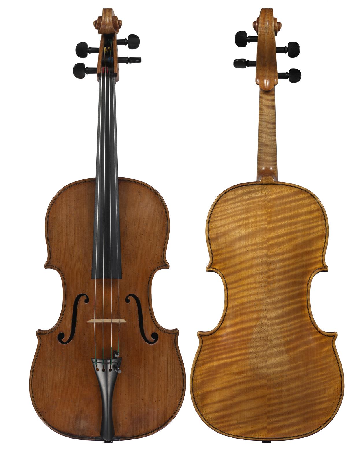 Viola by Simone Giamberini