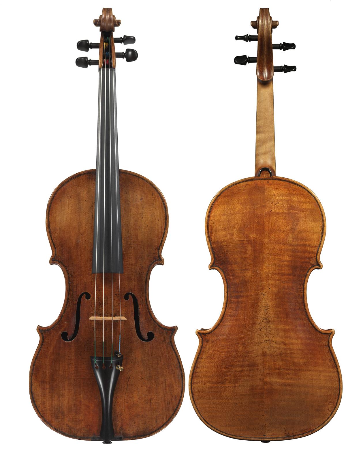 Viola by Carlo Tononi