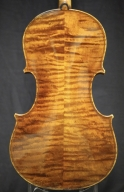 martin-nebel-violin-back