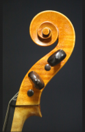 Genuzio-Carletti-1949-Viola-Scroll