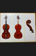 Annibale-Fagnola-Violin-Certificate-2